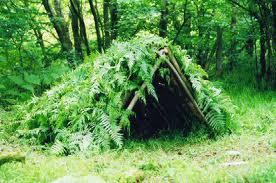 shelter for 72 hour kits