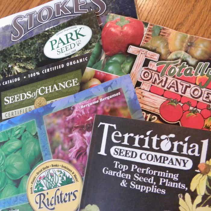 Our Favorite Seed Catalogs | PreparednessMama
