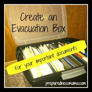 Day 19 – Gather Important Information, The Evacuation Box