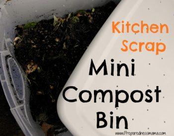 DIY Mini Compost bin | PreparednessMama