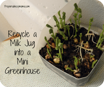 Get a jump on the gardening season make a Milk Jug Greenhouse | PreparednessMama