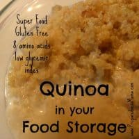 Quinoa Food Storage