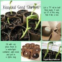 Make toilet paper seed starters | PreparednessMama