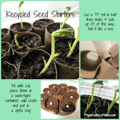 Recycled Seed Pots - Get a jump on your garden with toilet paper seed starters | PreparednessMama