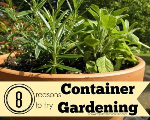 8 Reasons to try container gardening | PreparednessMama