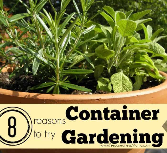 8 Reasons to Try Container Vegatable Gardening