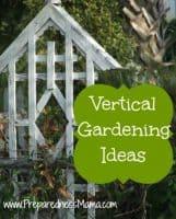 8 Reasons to try vertical gardening | PreparednessMama