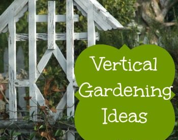 8 Reasons to try vertical gardening | PreparednessMama