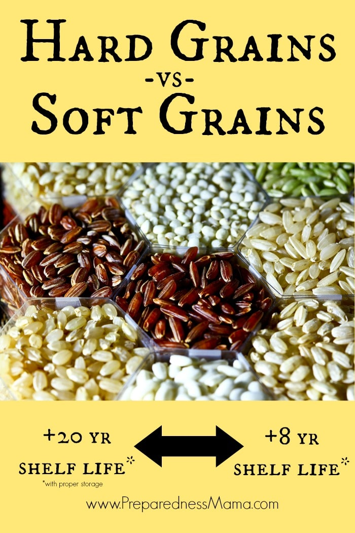 Hard vs Soft grains - should you care? | PreparednessMama