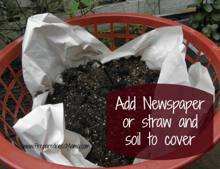 Add newspaper or straw to your basket