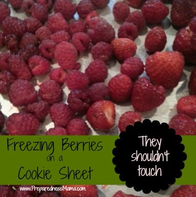 freezing berries on a cookie sheet