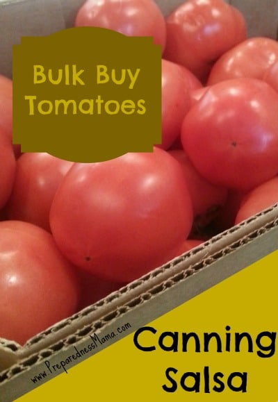 Bulk Buy: Canning 25 Lbs of Salsa Tomatoes