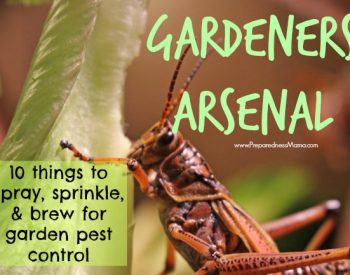 Gardeners Arsenal: 10 Things to Spray, Sprinkle and Brew for Organic Pest Control : PreparednessMama