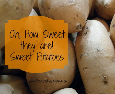 Oh, How Sweet They Are! – Sweet Potato 101