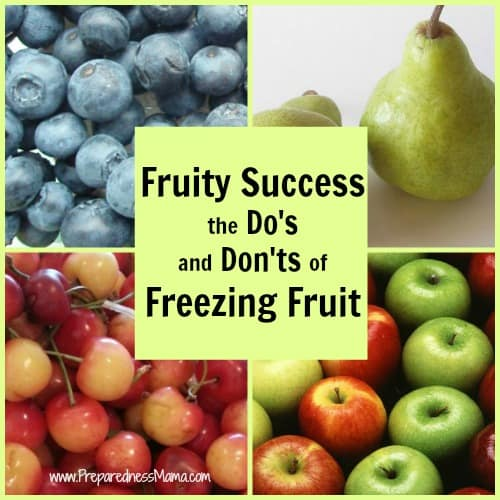 Freezing Fruit - You can successfully freeze any kind of fruit using 4 simple methods | PreparednessMama