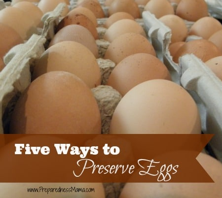 The best part of about summer is the abundance of fresh eggs. Grow your own or get them from a friend, these five ways to preserve eggs will make sure they are always on hand   PreparednessMama
