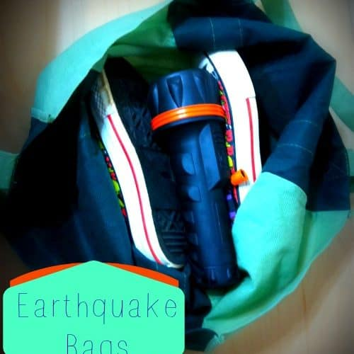 earthquake bag