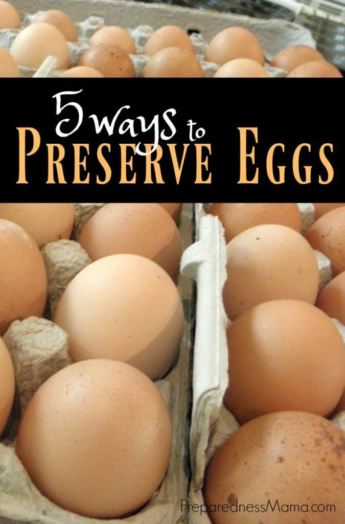 5 Ways to preserve eggs for food storage | PreparednessMama