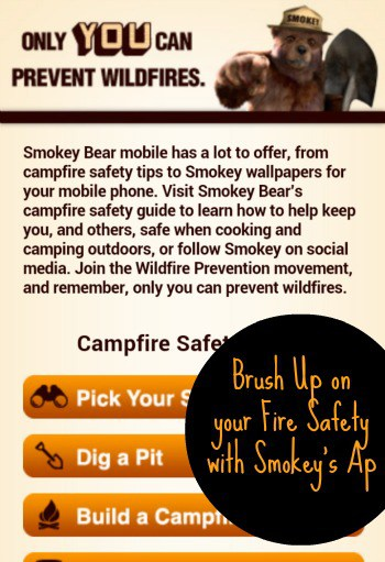 Get Your Smokey On – Learn to Prevent Wildfires