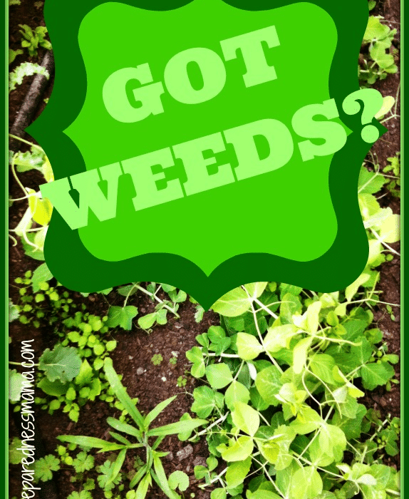 Got Weeds? Weed Your Yard and Mind