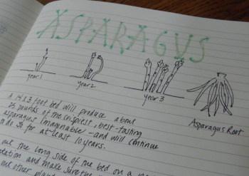 Asparagus garden journal page