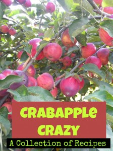 A collection of crab apple recipes from around the web | PreparednessMama