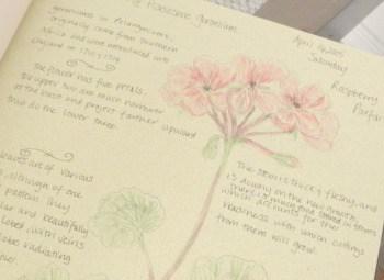 geranium garden journal entry