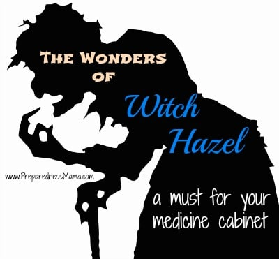 The wonders of witch hazel - a must for your medicine cabinet | PreparednessMama