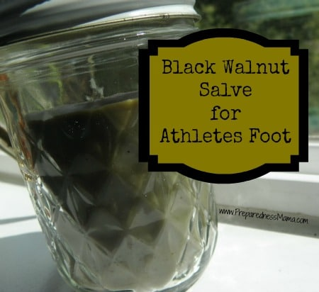 Apply black walnut salve liberally to athlete's foot and blisters | PreparednessMama