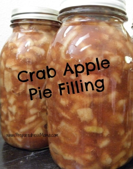 Crab Apple Pie Filling