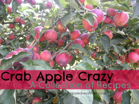Crab Apple Crazy, a Collection of Recipes | PreparednessMama