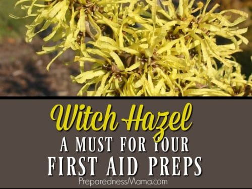 Witch hazel has many anti-properties that make is a great addition to your first aid supplies | PreparednessMama