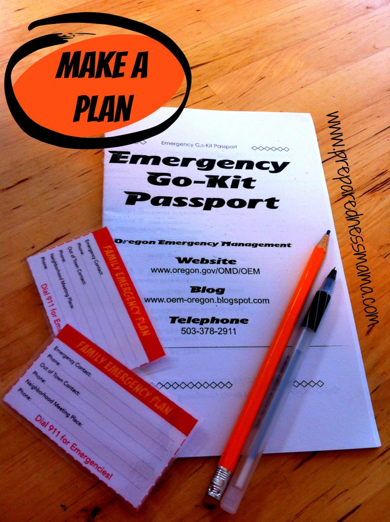 The Family Emergency Plan is the beginning step to keep your family safe | PreparednessMama