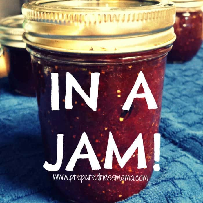 In a Jam! Homemade Jam is Love