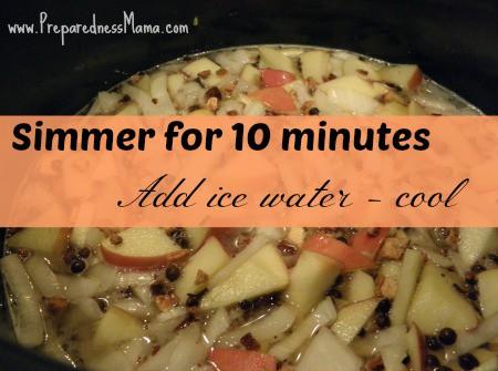 Simmer the brine for 10 minutes | PreparednessMama