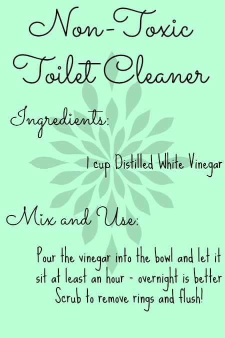 NonToxic Toilet Cleaner