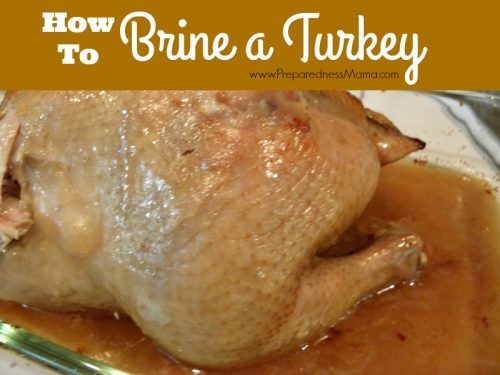 How to Brine a Turkey + Rosemary Apple Brine Recipe | PreparednessMama