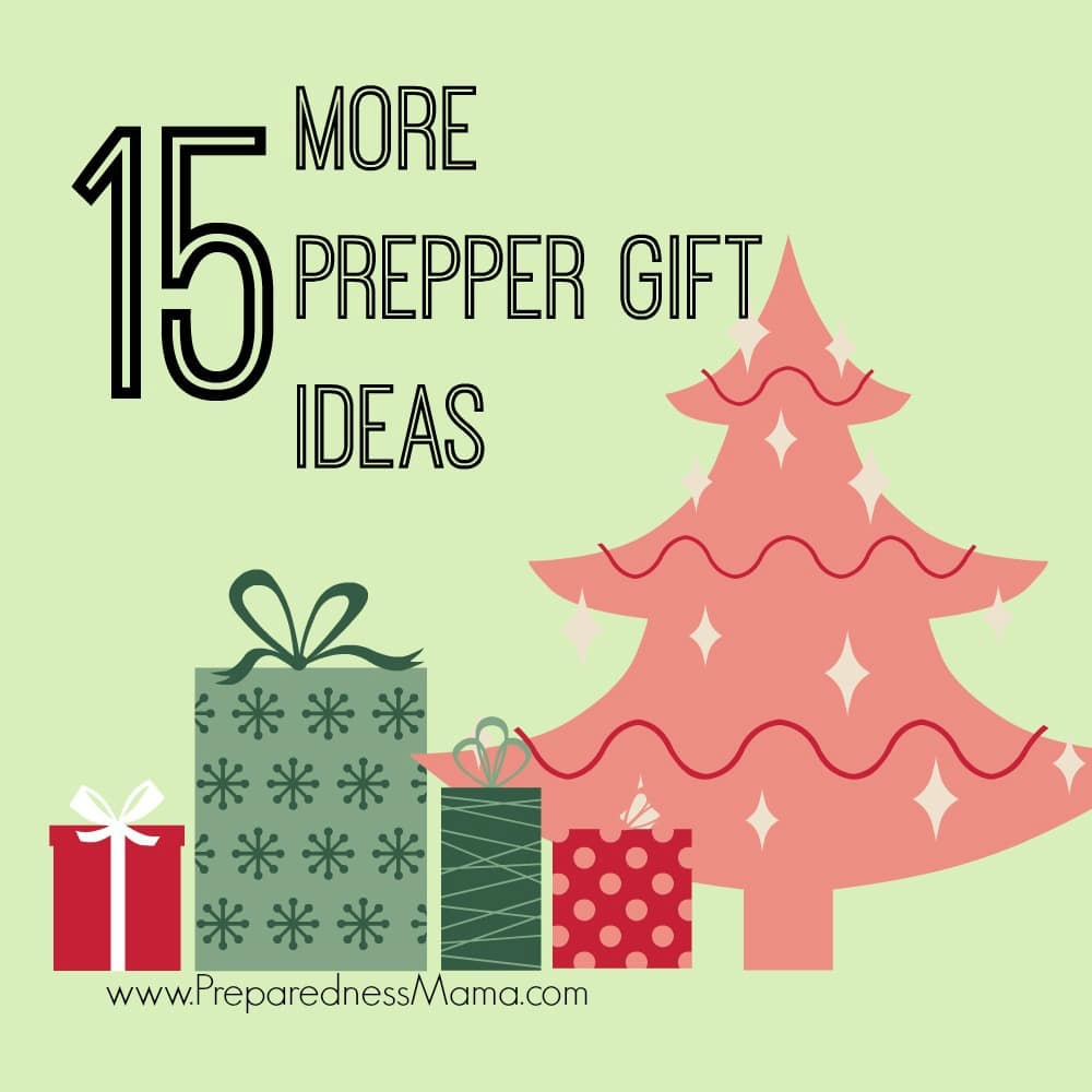 15 More Preparedness Fidt Ideas to Rock the Sock | PrepaednessMama