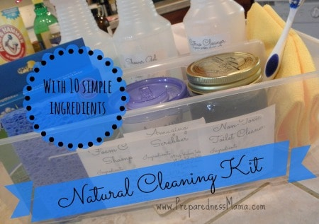 DIY Natural Cleaning Kit | PreparednessMama