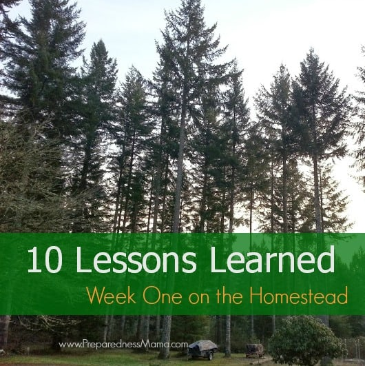 10 lessons learned one week on the homestead