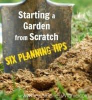 Starting a Garden From Scratch - Six Planning Tips   PreparednessMama