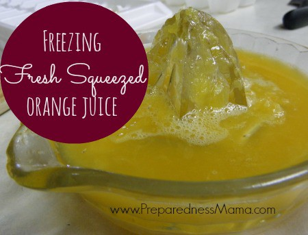 Freezing fresh squeezed orange juice | PreparednessMama