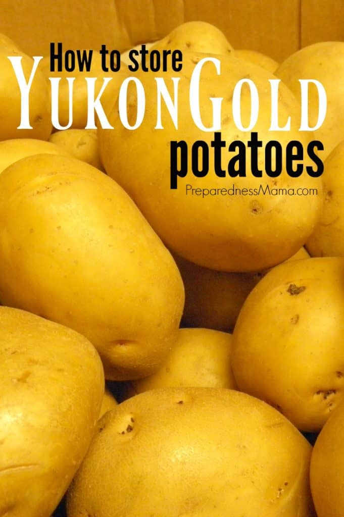 Storing Yukon Gold potatoes couldn't be easier with these tips | PreparednessMama