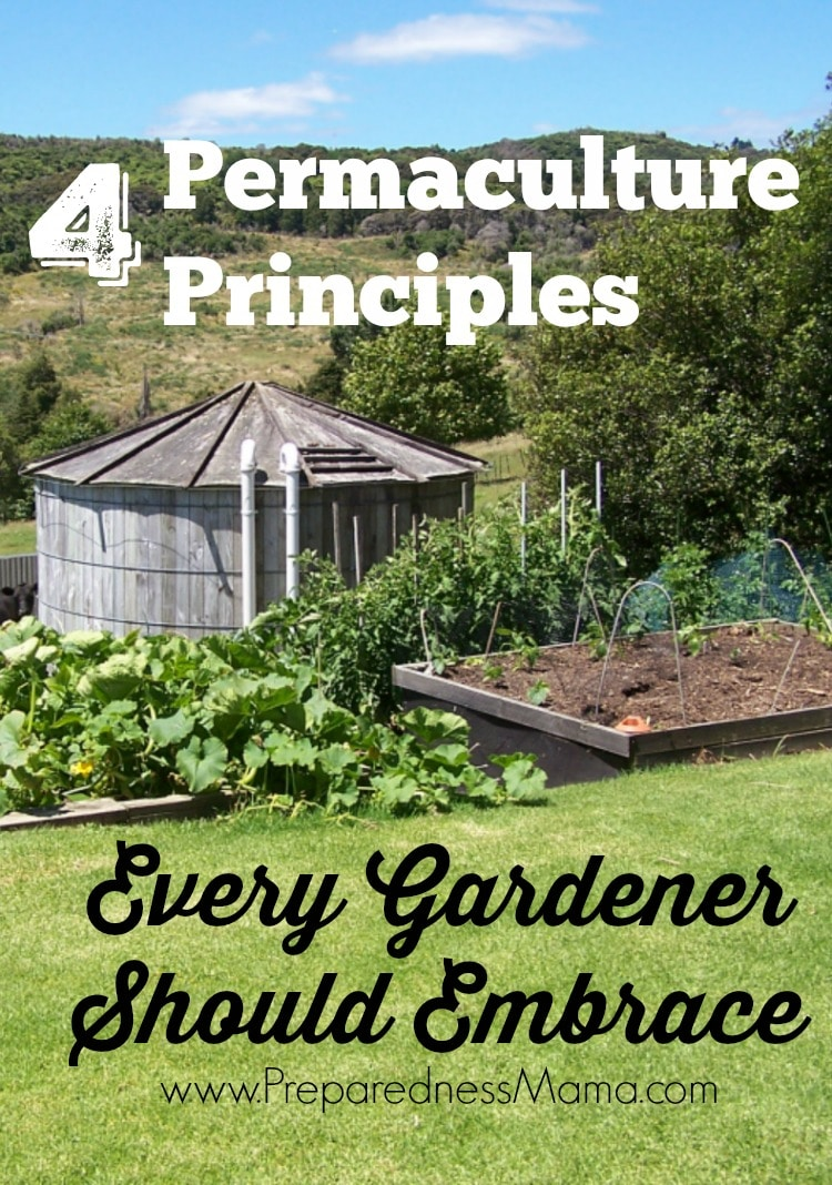 permaculture home design - Picture Ideas References