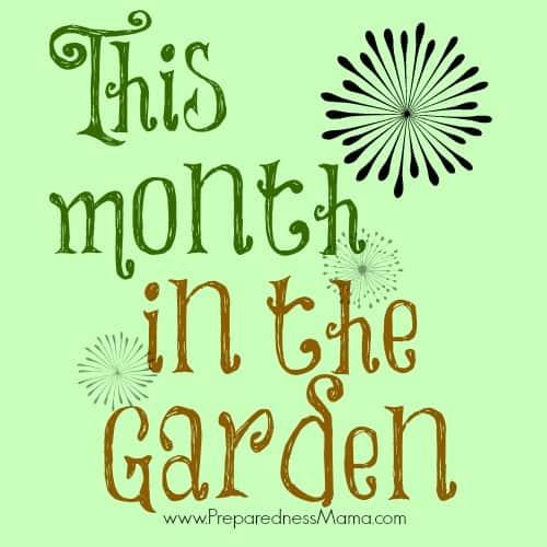 This Month In The Garden Preparednessmama