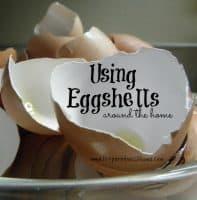 Using eggshells around the home  Preparednessmama