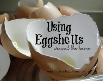 Using eggshells around the home |Preparednessmama