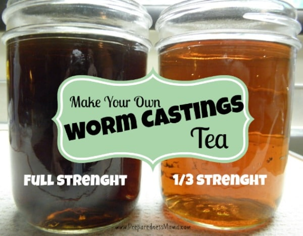 Make your own worm castings tea | PreparednessMama