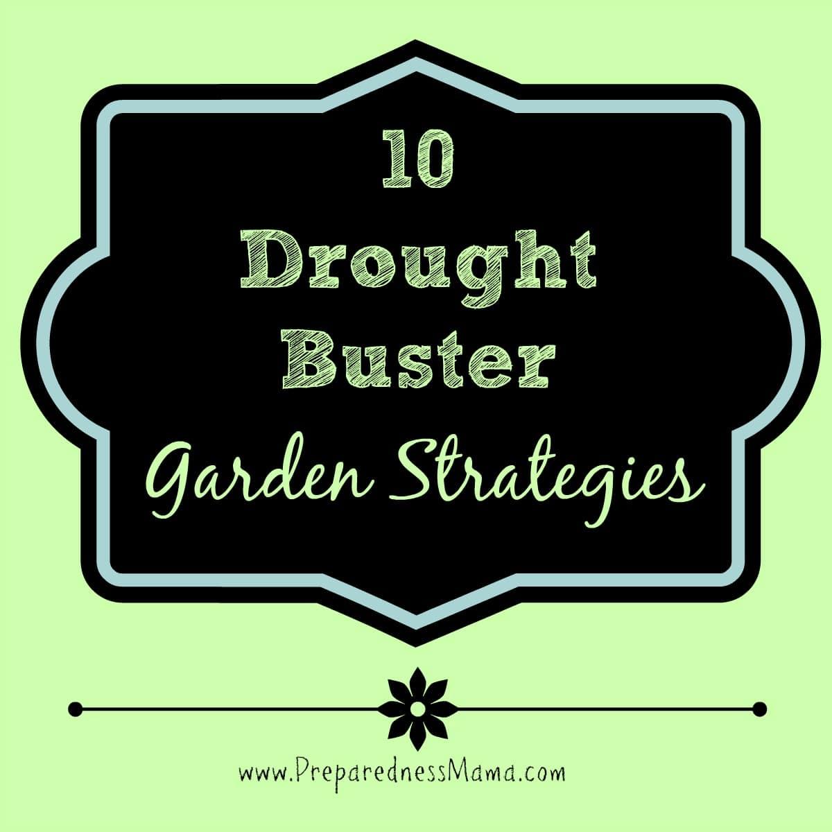 10 Drought Buster Gardening Strategies | PreparednessMama