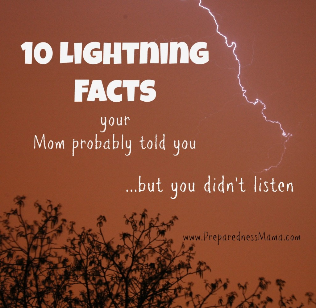 10 lightning facts mom probably told you | PreparednessMama
